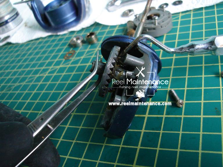 spinning reel drive gear